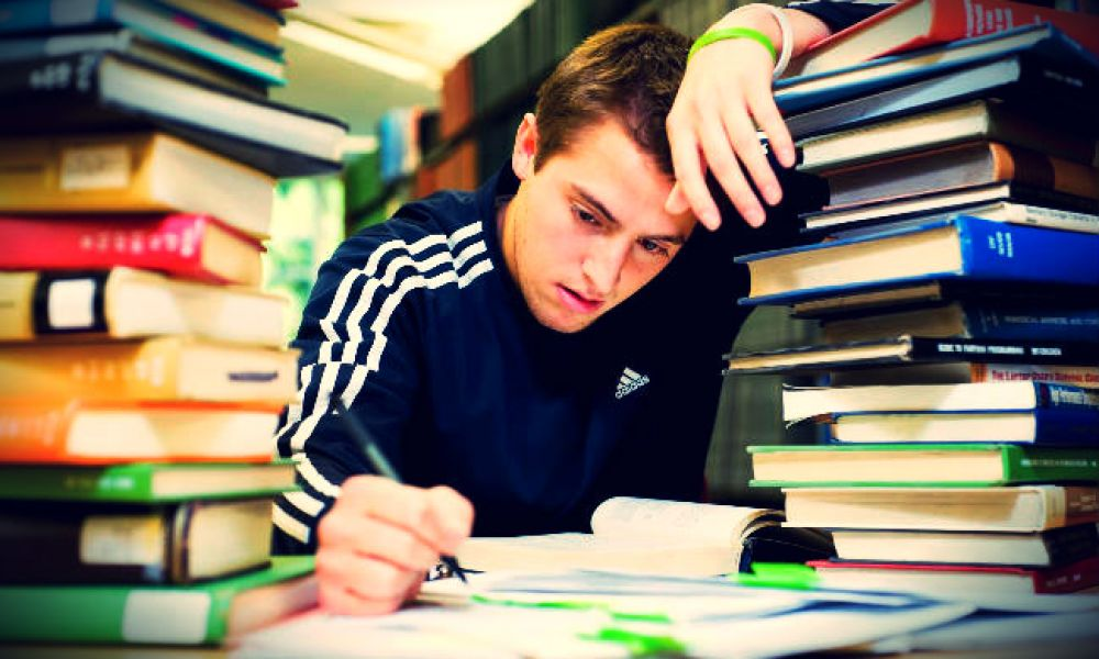 college love vs studies If your essay about love is a college admission essay college admission gender studies is simply a refined name for women studies due to the fact that.