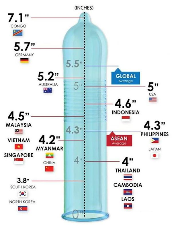 Average Size Of An Asian Penis 34