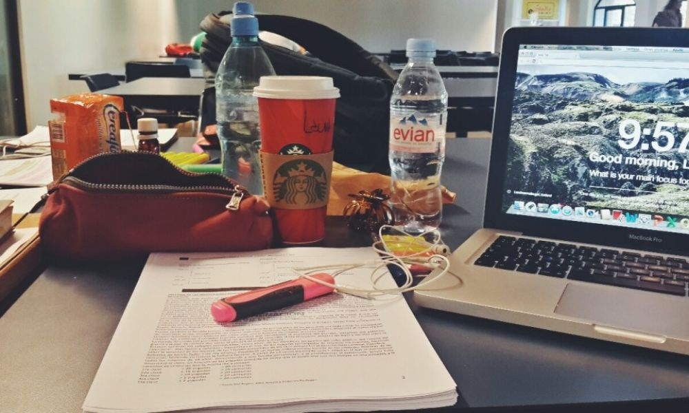 Essay writing for college students