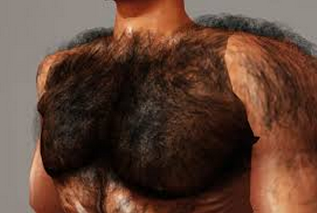 Manscaping 101 Collegetimes Com