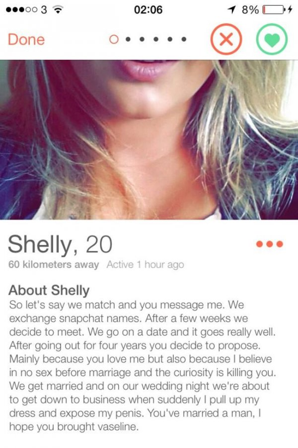 16 Of The Best Tinder Bios, Probably Of All Time | CollegeTimes com