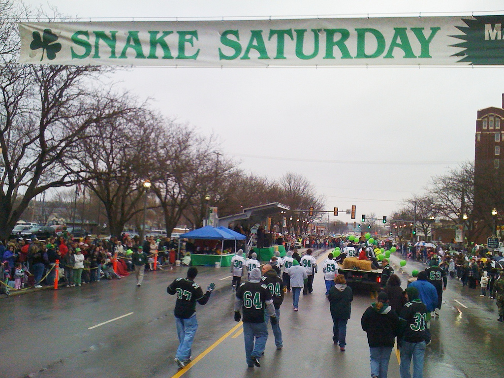 festival snake saturday parade - 700×525