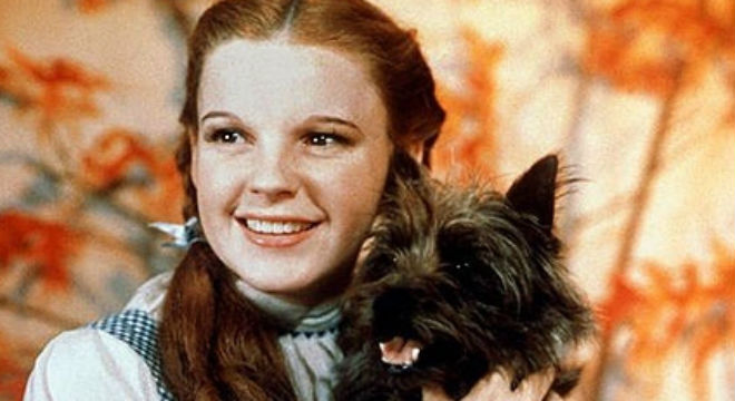 Dorothy And Toto Wizard Of Oz