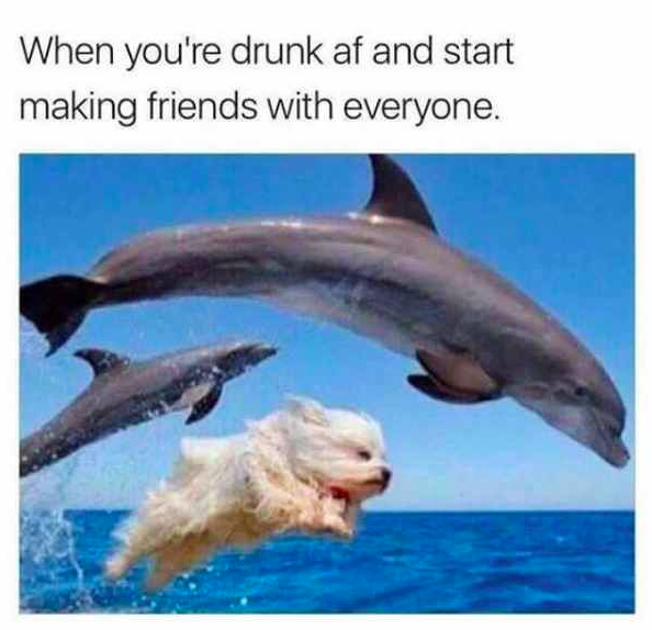 10 Memes That Describe Every Drunk Night Out | CollegeTimes com